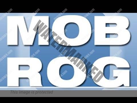 MOBROG Survey 2021