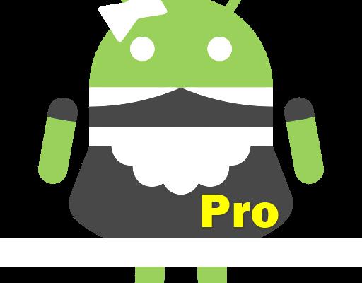 SD Maid Pro 2021